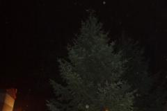 Rozsvěcení vánočního stromu 30.11.2014